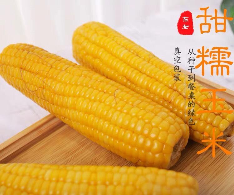[甜玉米批发]甜玉米  【10根】甜糯黄糯玉米真空东北粘苞米棒黏鲜香非转基因粗粮价格26元/箱