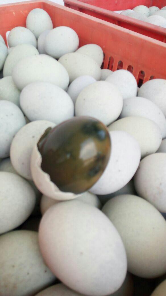 [无铅皮蛋批发]无铅皮蛋价格6元/斤
