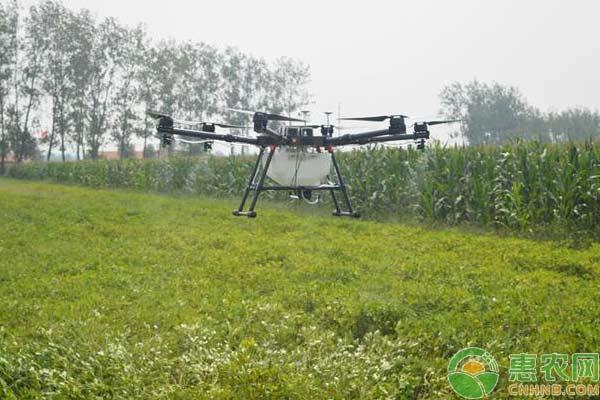 如何利用植保无人机释放赤眼蜂?