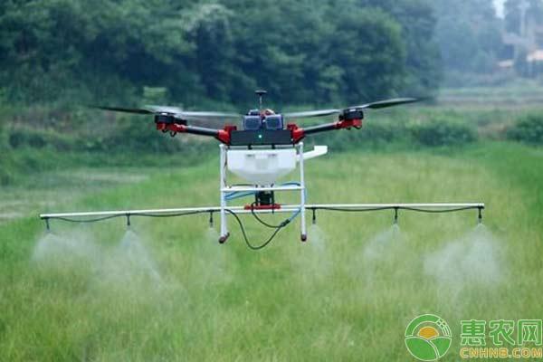 无人机释放赤眼蜂方式的选定
