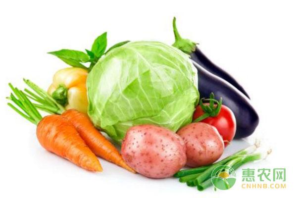 怎样在阳台上种植蔬菜?