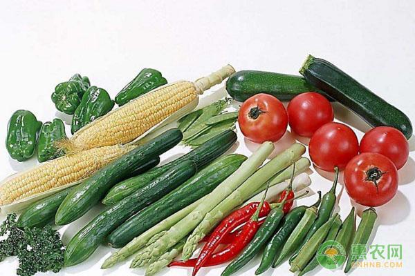 大棚蔬菜管理常见问题汇总(附问题解答)