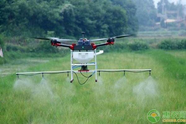 探讨水稻无人机与人工喷药的区别