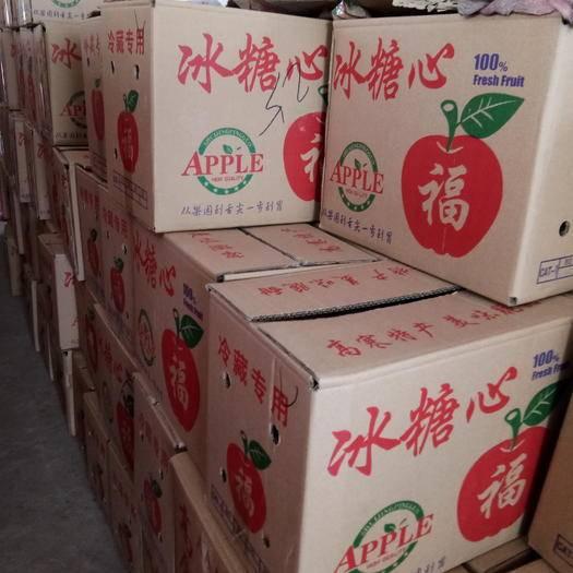 湖北省荊州市公安縣冰糖心蘋果 膜袋 片紅 75mm以上