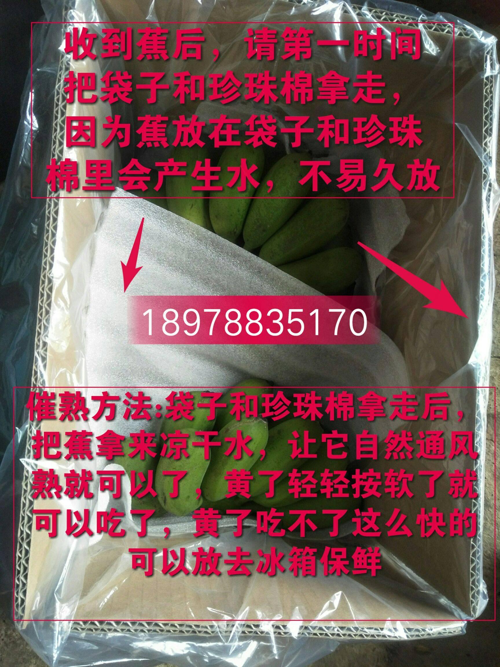 自家種植小米蕉小果20元9斤包郵