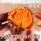 六鰲地瓜 【預售】六鰲蜜薯迷你果5斤裝 一手貨源~一件代發