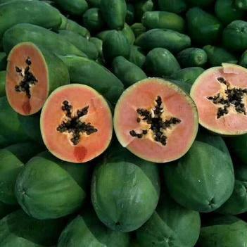 紅心木瓜 1.5 - 2斤
