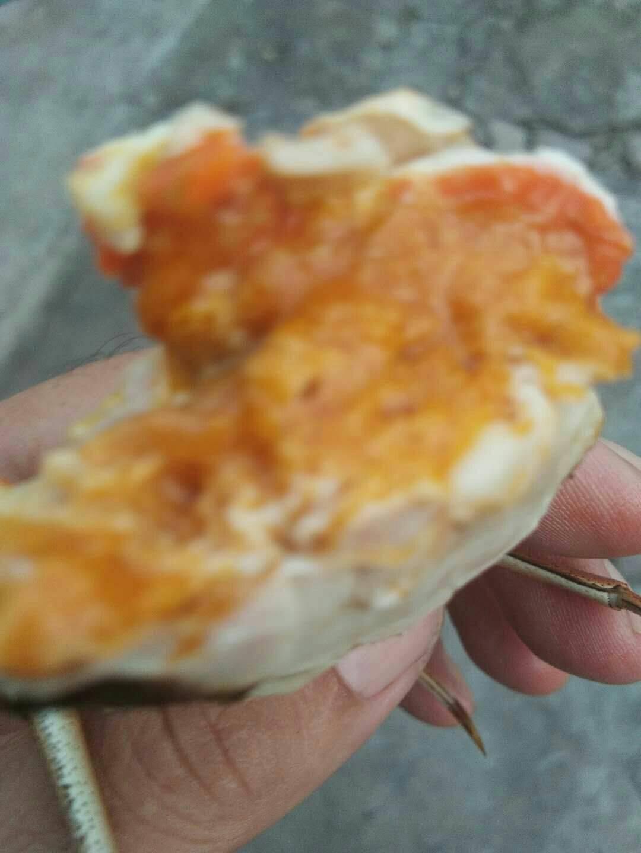 陽澄湖精品 大閘蟹公2.5兩一母1.8兩,有防偽溯源碼