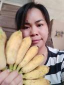 西貢蕉 七成熟