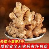 小黃姜  帶土 云南產地直供 包郵