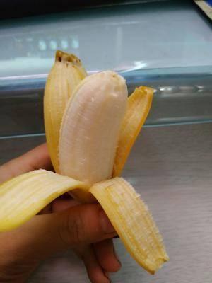 廣西壯族自治區南寧市西鄉塘區小米蕉 七成熟