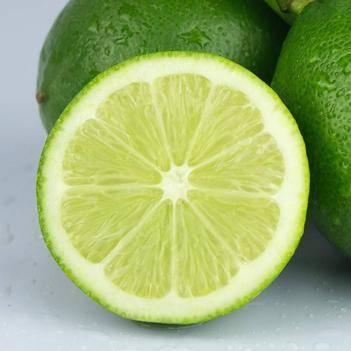 檸檬苗 青檸檬樹苗 現挖發貨 品種純正 量大從優
