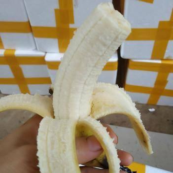 金陵香蕉 九斤 包邮 香甜软滑 果园直供