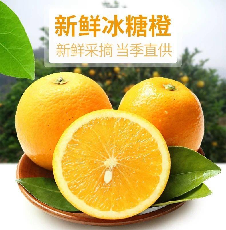 黔阳冰糖橙  一件代发  欢迎各大电商平台合作