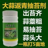 植物生長調節劑 水劑 瓶裝 微毒 噴科富大蒜返青抽苔劑