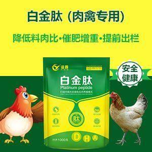 河南省鄭州市金水區微生物飼料添加劑 肉雞、鴨、鵝、鴿子、兔子催肥飼料,1天采食量增加,3天糞便細