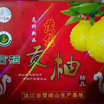 黄金贡柚 <2cm 4两以上