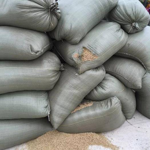 黑龙江省哈尔滨市五常市东北黑米 东北黑香米 不染色 纯绿色食品
