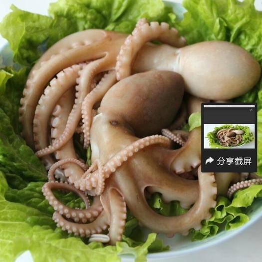 陜西省西安市雁塔區八爪魚
