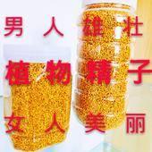 柳樹花粉 新疆特產蜂蜜百花蜜野