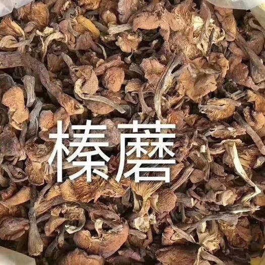 黑龙江省伊春市五营区蘑菇