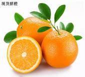 紐荷爾臍橙 60 - 65mm 8兩以上 甜橙  禮盒裝 5斤