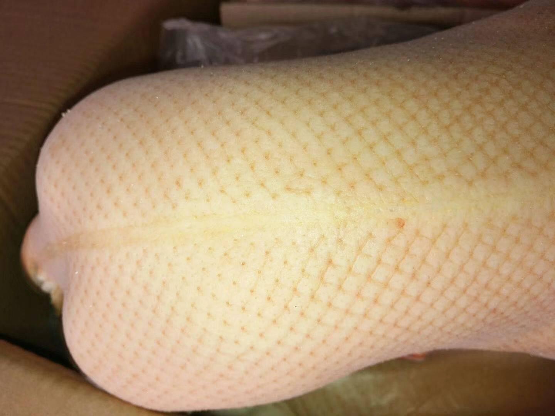 [白条鸭批发]白条鸭 冷冻 价格40元/个