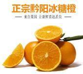 黔陽冰糖橙 75 - 80mm 4-8兩