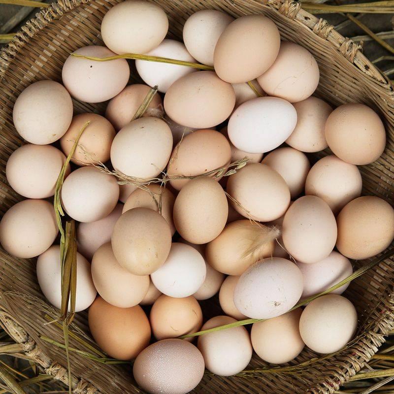 土鸡蛋 40个起包邮 包邮包售后【破损包赔】