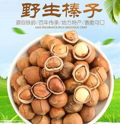 遼寧省沈陽市沈河區榛子 6-12個月 包裝