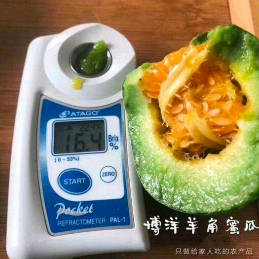 山东省聊城市莘县 产地代收 市场档口 精品羊角蜜 甜瓜 香瓜  五斤 一件代发
