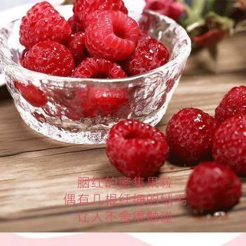 紅樹莓 鮮果