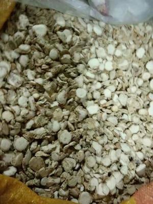 河北省石家莊市鹿泉區干沙姜  18-24個月 內雙層塑料袋+外紙箱 優質三奈