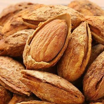 質量保證新疆薄皮巴旦木全國服務售后廠家直銷