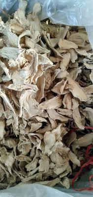 山東省濰坊市安丘市低硫干姜片 6-12個月 袋裝