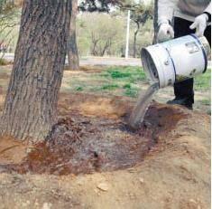除草剂 一年寸草不生甲嘧磺隆,非耕地除草除树除杂灌