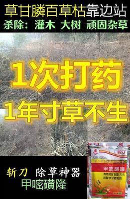安徽省合肥市肥东县除草剂 一年寸草不生甲嘧磺隆,非耕地除草除树除杂灌