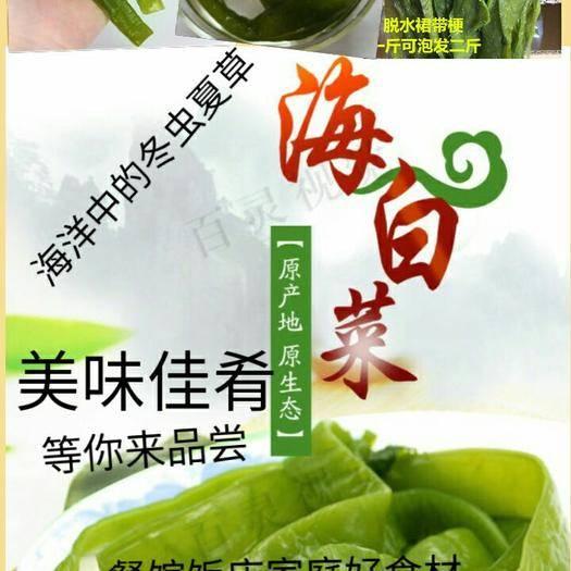 河北省唐山市遷安市 鹽漬海白菜梗海白菜梆日本人長壽的秘訣吃海洋中的食物5斤裝包郵