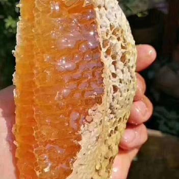 土蜂蜜 75