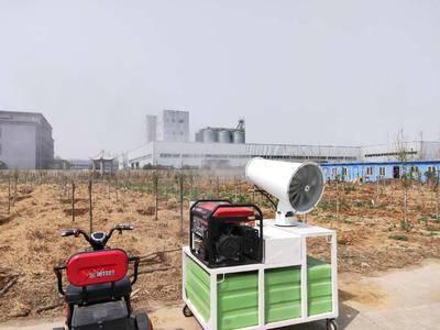 河南省鶴壁市淇濱區經濟作物病蟲害防治 汽油發電機組噴霧降塵器