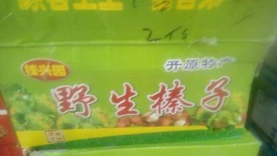 河北省石家莊市鹿泉區榛子  6-12個月 包裝 野生榛子