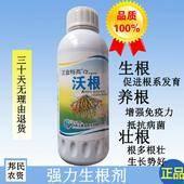 生根劑 1000g生根,養根,壯根