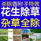 乙羧氟草醚 花生苗后除草,禾阔莎通除,对花生安全