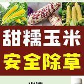 莠去津 甜糯玉米/普通玉米/甘蔗高粱除草