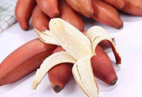 广西壮族自治区南宁市兴宁区 红皮香蕉美人蕉火龙蕉非小米蕉,香蕉,芭蕉