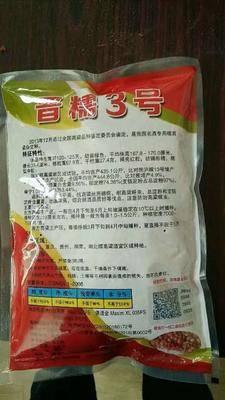湖北省襄陽市襄州區晉糯3號高粱種子 雜交種 ≥85%