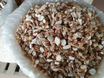 廣西壯族自治區玉林市玉州區干沙姜 24個月以上 雙層塑料袋