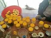 雪脂蓮蜂蜜 玻璃瓶裝 2年以上 98%