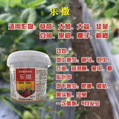河南省鄭州市管城回族區果樹病蟲害防治 蔬菜瓜果撒施一次5個月無蟲