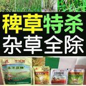 五氟 氰氟吡嘧 稗草特除所有杂草水稻